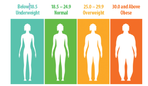 What, Exactly, is BMI? - Tufts Health & Nutrition Letter