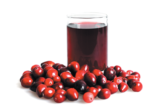 Drinking cranberry juice can't cure a urinary tract infection, but 100 percent juice might help prevent recurrent, uncomplicated infections.