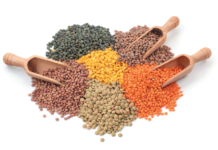 Lentils come in many different colors and sizes. All are delicious, healthful, versatile, and easy to cook.